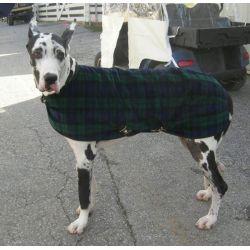 Great Dane Snuggler Dog Coat