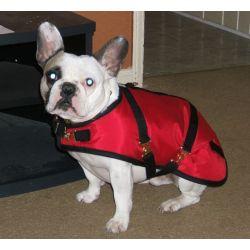 French Bulldog Dog Coat