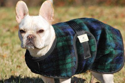 French Bulldog Snuggler Dog Coat