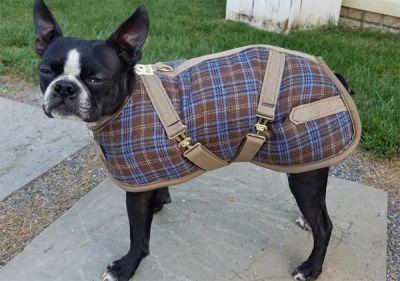 Country Plaid Dog Coat