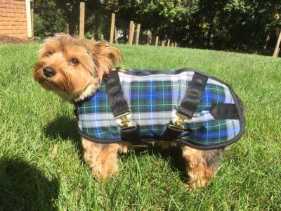Campbell Plaid Dog Coat