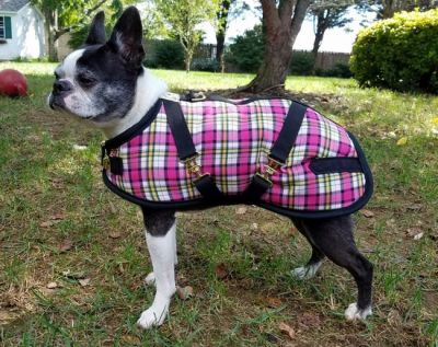 Razzle Plaid Dog Coat