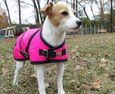 Pink Nylon Dog Coat