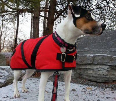 Red Nylon Dog Coat