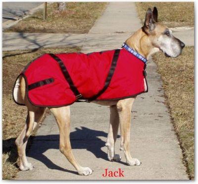 Great Dane Dog Coat